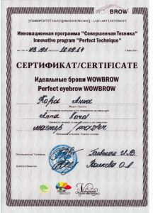 certificate Anna Kara best permanent eyebrows design