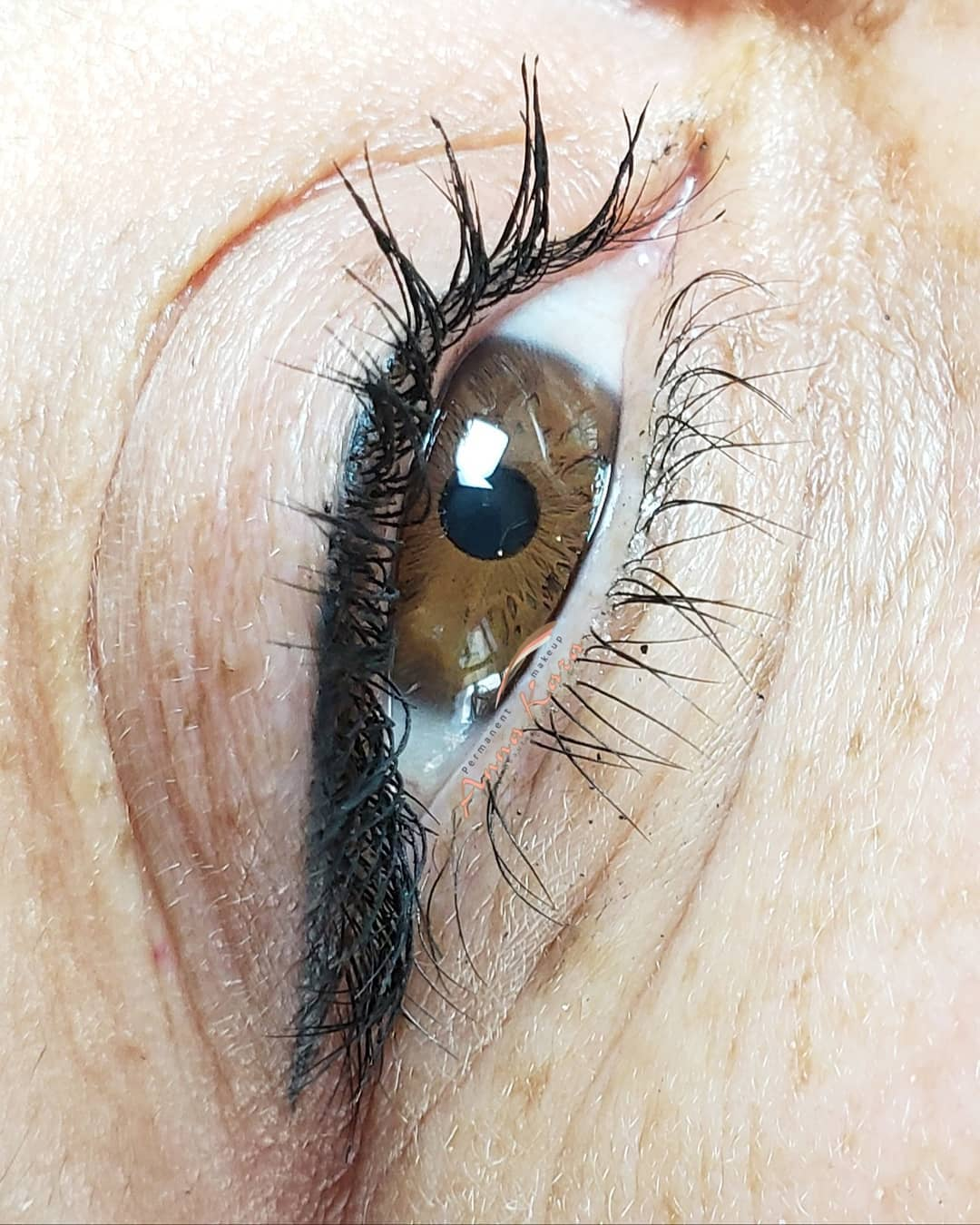 Cosmetic Permanent Eyeliner San Go